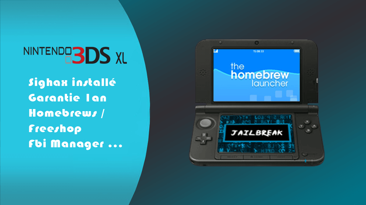 ACHAT 3DS XL SIGHAX ARM9.png