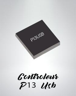 Micro Controlleur P13USB Nintendo Switch